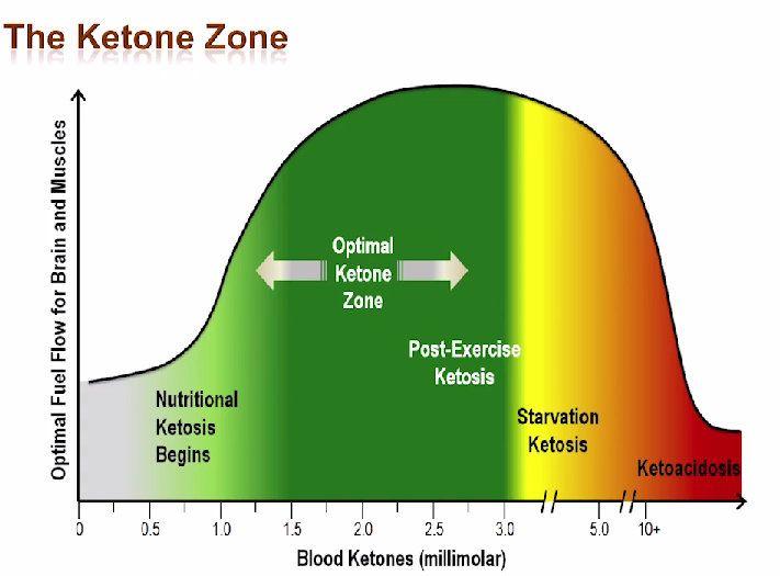 ketosis-chart